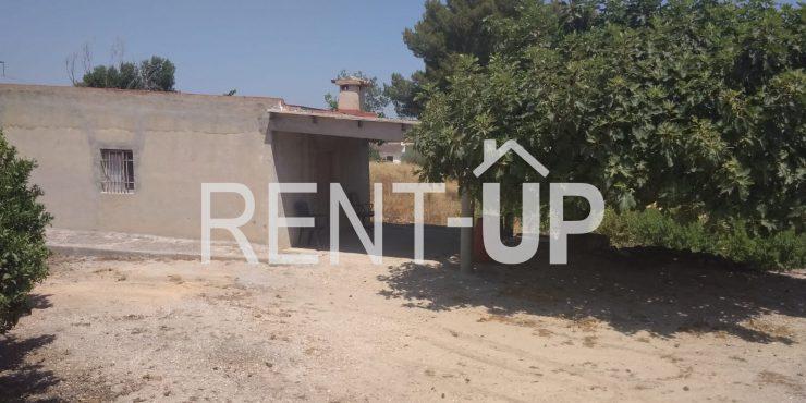 Venta de terreno en producción de cítricos, con casa de aperos, en Xàtiva, Ref. 4006