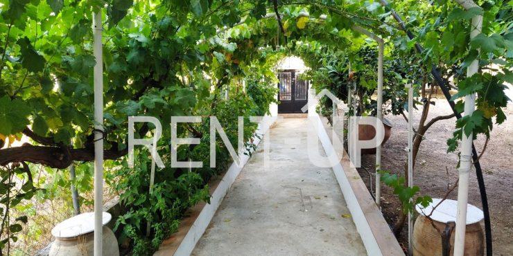 Alquiler parcial o total de casa rural con jardin, en Pinet, Ref. 551